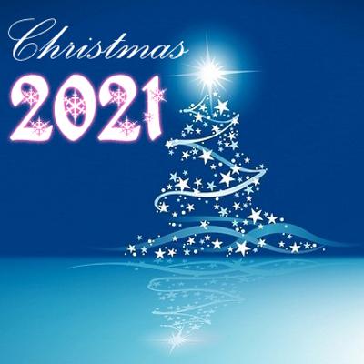 blauwe kerstboom kerstwen 2021